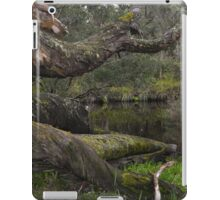 Bush Serenity iPad Case/Skin