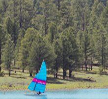 Boat on Lake Mary Sticker