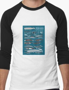 A SEA FULL OF CETACEANS: WHALES, DOLPHINS, AND PORPOISES Men's Baseball ¾ T-Shirt