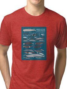 A SEA FULL OF CETACEANS: WHALES, DOLPHINS, AND PORPOISES Tri-blend T-Shirt