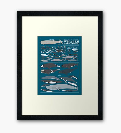 A SEA FULL OF CETACEANS: WHALES, DOLPHINS, AND PORPOISES Framed Print