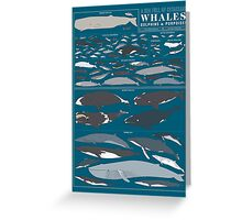 A SEA FULL OF CETACEANS: WHALES, DOLPHINS, AND PORPOISES Greeting Card