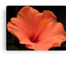 Peach Parfait Canvas Print