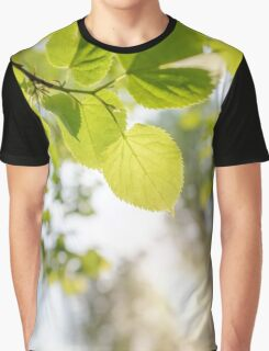 Backlit Tilia cordata Leaves Graphic T-Shirt