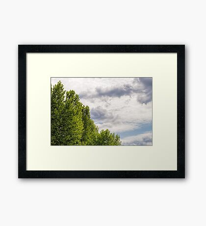 Stormy Sky Over the trees Framed Print