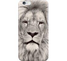 Light Sepia Toned Lion Portrait iPhone Case/Skin