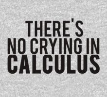 There's No Crying In Calculus by mralan