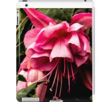 Our brilliant fuschia iPad Case/Skin
