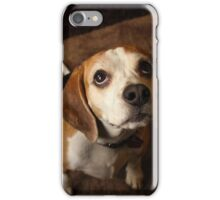 Puppy Eyes iPhone Case/Skin