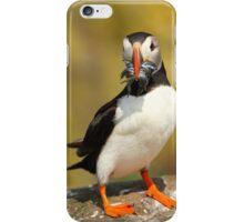 Sand-Eel-Wich iPhone Case/Skin