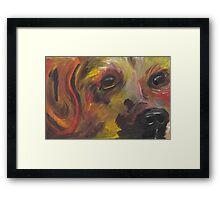 Labrador 2 Framed Print