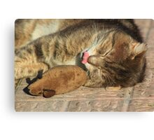 Tabby cat with toy mouse licking lips Canvas Print