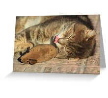Tabby cat with toy mouse licking lips Greeting Card