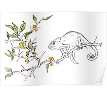 Kei-apple Botanical - and a Chameleon Poster