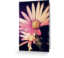 Double Pink Greeting Card