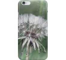 Tick Tock Dandelion Clock iPhone Case/Skin