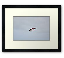 Air Force Northrop F-5E Tiger II Framed Print