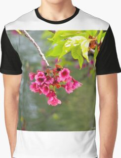 Japanese Gardens - Buenos Aires Graphic T-Shirt