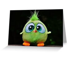 Funny Cute Big Eyed Fluffy Green Bird Greeting Card