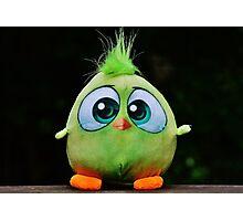 Funny Cute Big Eyed Fluffy Green Bird Photographic Print