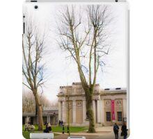 Greenwich color iPad Case/Skin