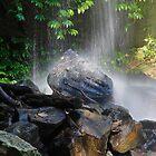 Ceder Creek Gold Coast Hinterland  by sarcalder