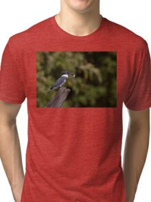 Belted Kingfisher with fish Tri-blend T-Shirt