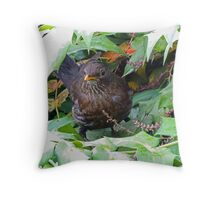 Looking For One More Teacher Throw Pillow