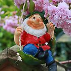 Happy Swinging Gnome by AnnDixon