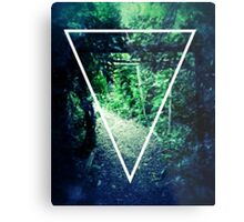 Stylish Forest T-Shirt/Phone/Pillow Cases Most Popular Metal Print