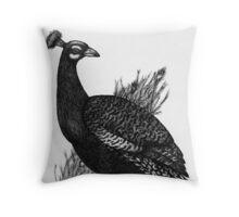 Long Tailed Peacock Throw Pillow