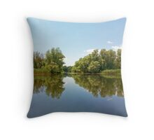 Danube Delta Throw Pillow