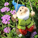 Smiler Gnome on a Swing by AnnDixon