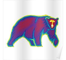 Heat Vision - Polar Bear Poster