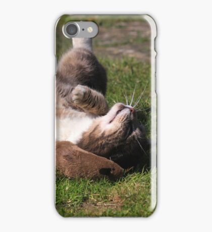 Tabby cat playing with toy mouse iPhone Case/Skin