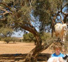 Goats up a tree with boy Sticker