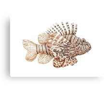 Lionfish illustration, pen and ink Canvas Print