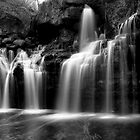 Akron Falls by Lisa Cook