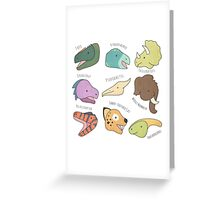 Dinosaurs (& Friends!) Greeting Card