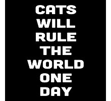 CATS WILL RULE THE WORLD ONE DAY Photographic Print