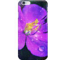 Fairytale iPhone Case/Skin