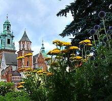 Wawel Cathedral by karina5