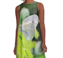 Cabbage White A-Line Dress