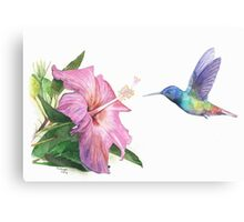 Hummingbird and Hibiscus Canvas Print