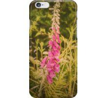 Foxglove (Digitalis purpurea) wild flower iPhone Case/Skin