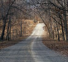Country Road In Early Spring by WildestArt