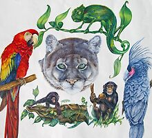 Wild Animals by Kirsty O'Leary-Leeson