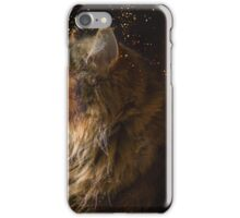 The Maine Coon lady iPhone Case/Skin