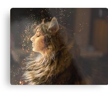 The Maine Coon lady Metal Print