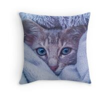 A Cat in a Blanket- Winter Time Throw Pillow